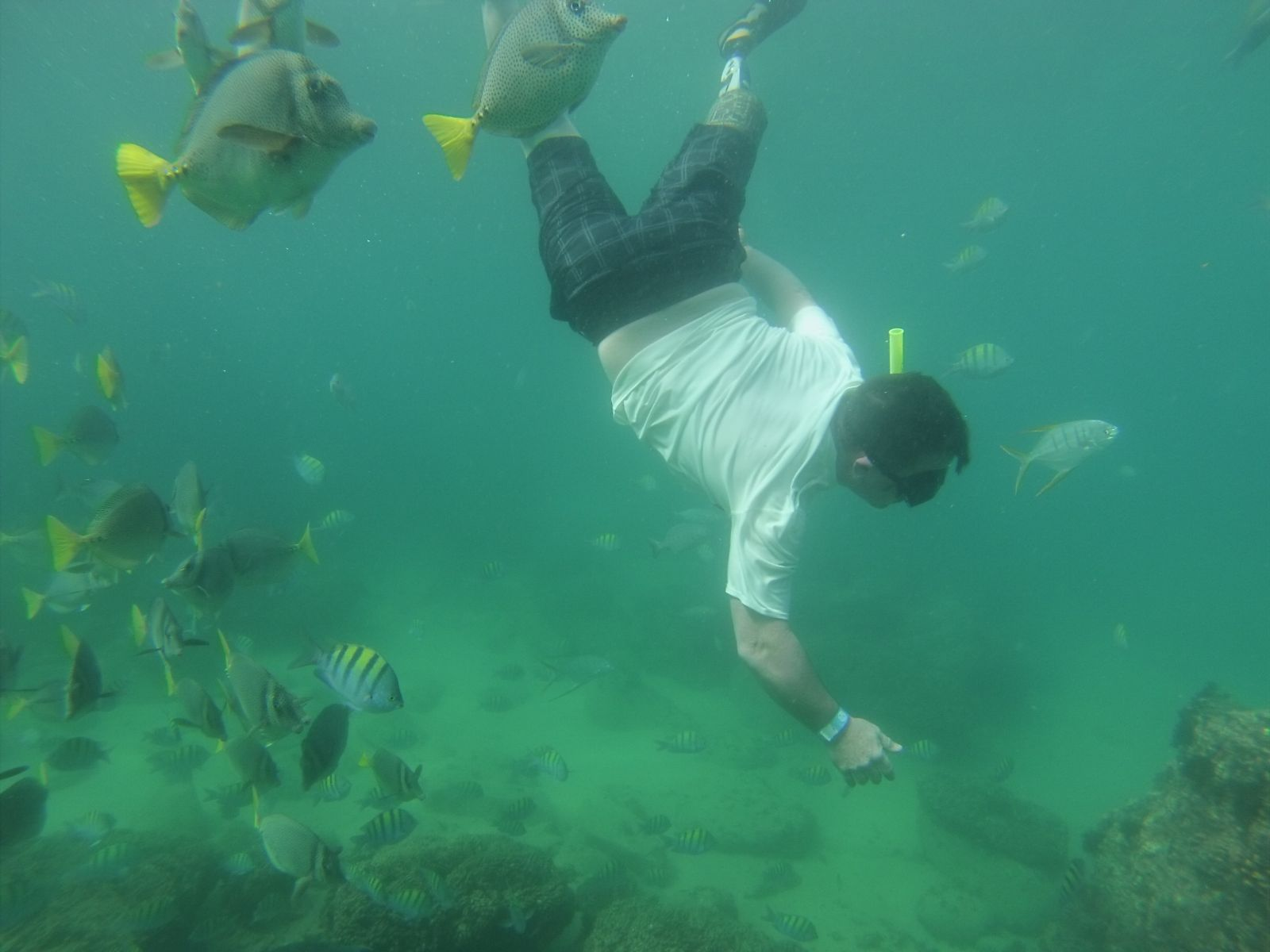 One of our patients snorkeling in Mexico with his above the knee prosthesis!
